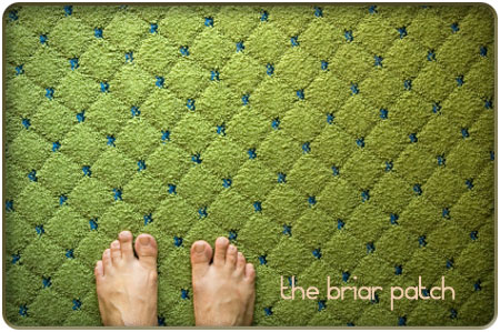 the-briar-patch